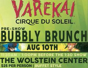Cirque du Soleil's Varekai at Wolstein Center