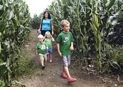 Lake Metroparks Farmpark open Tuesday through Sunday